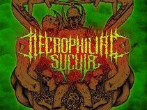 Necrophiliac Sucula