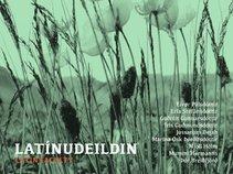 Latin Faculty - Latínudeildin