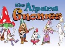 The Alpaca Gnomes!