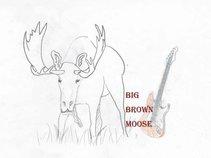Big Brown Moose