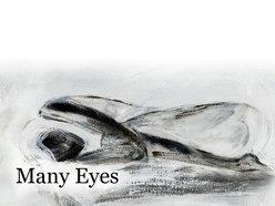 Image for Many Eyes