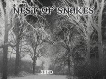 Nest of Snakes