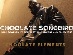 CHOQLATE SONGBIRD - CHOQLATE ELEMENTS (EP)