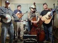 sassafras warthog bluegrass band