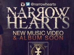 Image for Narrow Hearts
