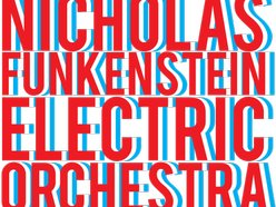 Image for Nicholas Funkenstein Orchestra