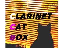 Clarinet Cat Box