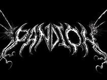 Pandion