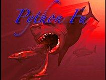 Python Fu