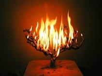 Burning Ones