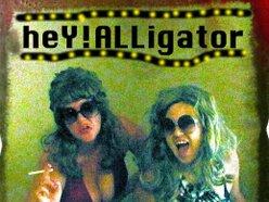 Image for heY!ALLigator