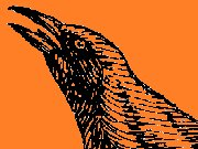 Image for Band of Grackles