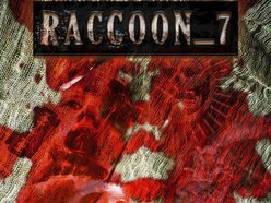 Image for Raccoon_7