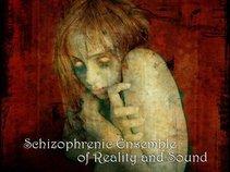 Schizophrenic Ensemble