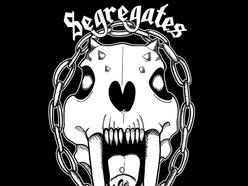 Image for Segregates