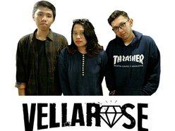 Vellarose