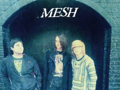 Image for Mesh