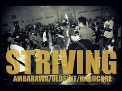 Image for STRIVING