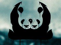 Siamese Panda