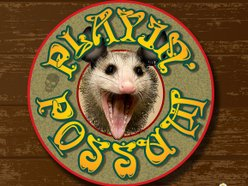 Image for Playin Possum