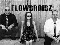 Flowdroidz
