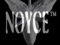 NOYCE™