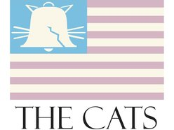 Image for the cats (usa)