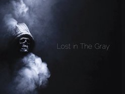 Image for Lost in the gray
