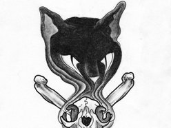 Image for Black Cat Bone
