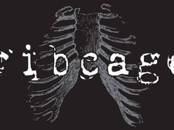 Image for ribcage