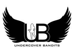 Undercover Bandits