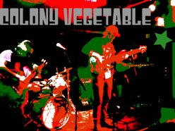 Image for Colony Vegetable