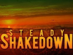 Image for Steady Shakedown