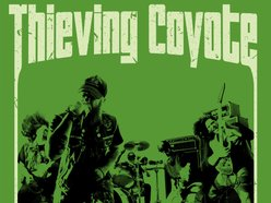Image for Thieving Coyote