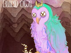 Image for Blind Owl