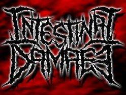 Image for Intestinal Damage