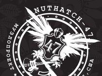 NUTHATCH-47