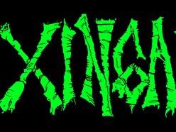 Image for Zingaia