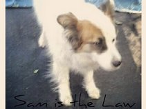 Sam is the Law