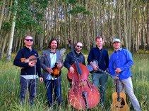 Rapidgrass Quintet