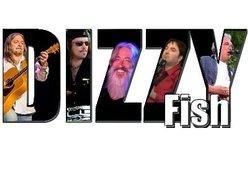 Image for DizzyFish