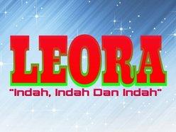 Image for LEORA