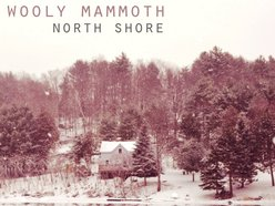 Image for Wooly Mammoth