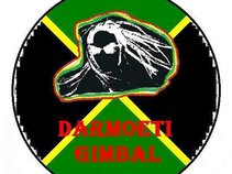 Darmoeti Gimbal