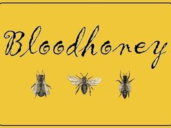 Image for Bloodhoney2012