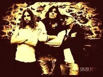 Sugar Bear Trio
