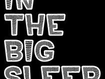 In the Big Sleep