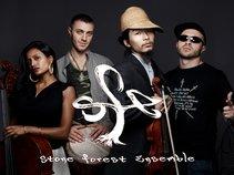 Stone Forest Ensemble