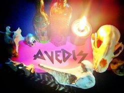 Image for AVEDIS