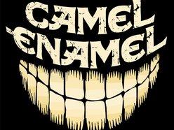 Image for Camel Enamel